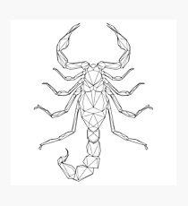 Low poly Scorpio zodiac sign Photographic Print