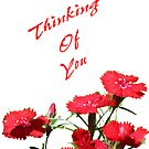 Thinking Of You by Diana Symes