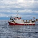 2405 Andey GK-66 by Photos by Ragnarsson