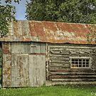 David Lawrence -Harry Robb Cabin by John  Kapusta