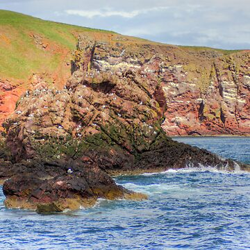 St. Abbs Rocks III by tomg