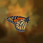 The Monarch Butterfly by Kathy Weaver