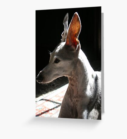 Ears Up Greeting Card
