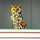 Owl on books by Arie Koene