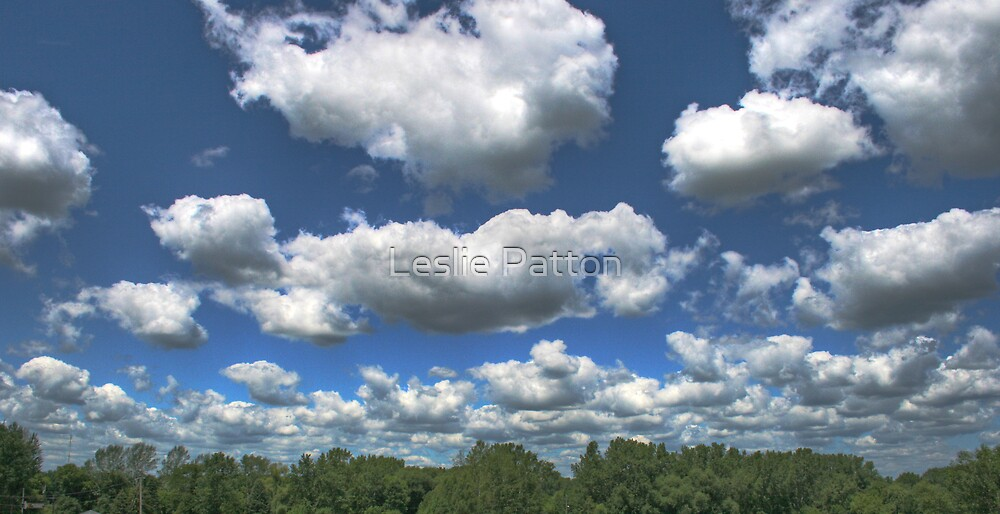 The Wisconsin Sky by Leslie Patton