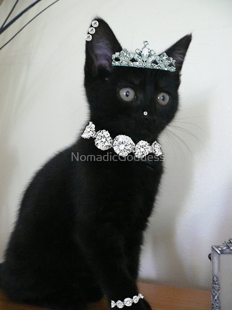 Pimp My Cat ~ ftloccontest1 by NomadicGoddess