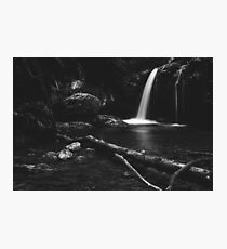 Minimalistic waterfall behind broken tree in black and white Photographic Print