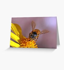 Landing Greeting Card