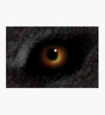 The EVIL EYE Of The Eclipse! Photographic Print