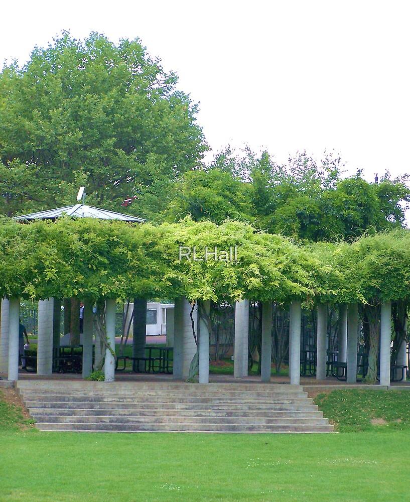 Wisteria Arbor by RLHall