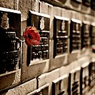 A Memory (on a Wall) by Scott G Trenorden