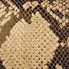 Python Skin by VanOostrum