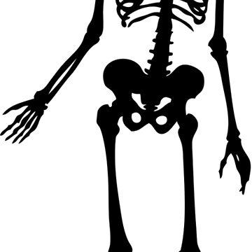 Skeleton Halloween by fabianb