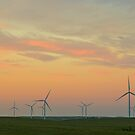 Wind Turbine Sunset by Bo Insogna