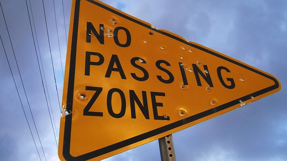 I SAID, No Passing! by Diana Forgione