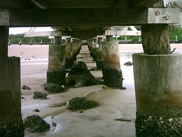 The Old Wooden Bridge by Judy Woodman