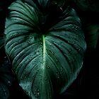 100% green by Nathalie Chaput