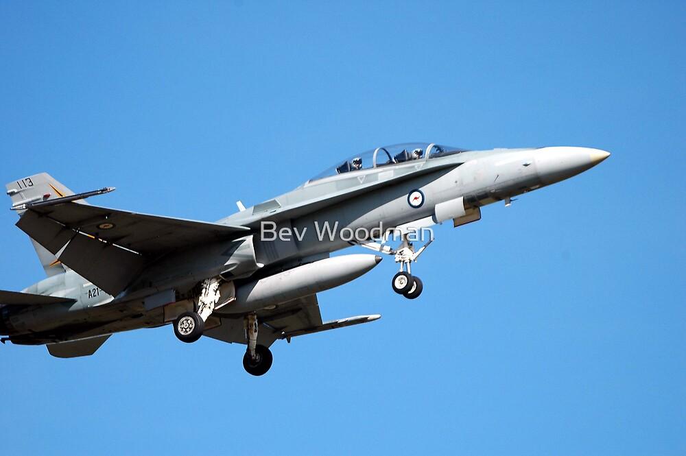 FA-18 - RAAF BASE WILLIAMTOWN NSW by Bev Woodman