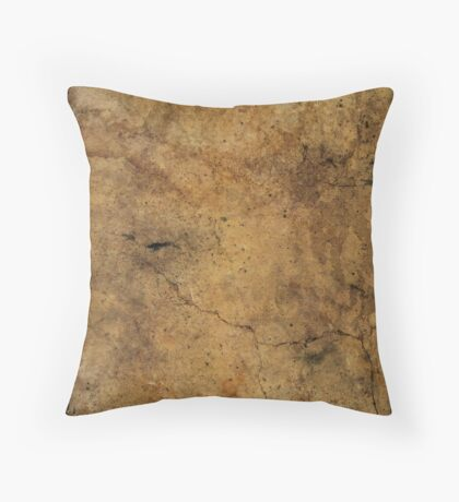 Interacting with wildlife - African Striped Skink Throw Pillow