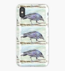 Crows are messengers - Coco iPhone Case/Skin
