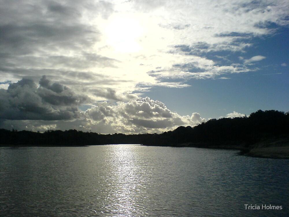 Stumer's Creek, Sunshine Coast by Tricia Holmes