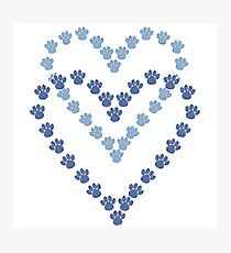 Blue Heart Shaped Paw Prints Photographic Print