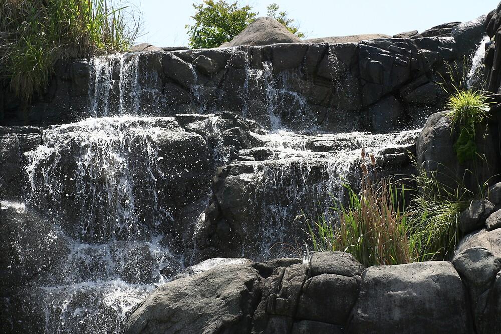 Waterfall by Lori Walton
