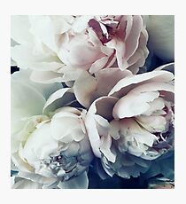 Pastel Flowers  Photographic Print