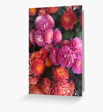 Autumn Flowers Greeting Card