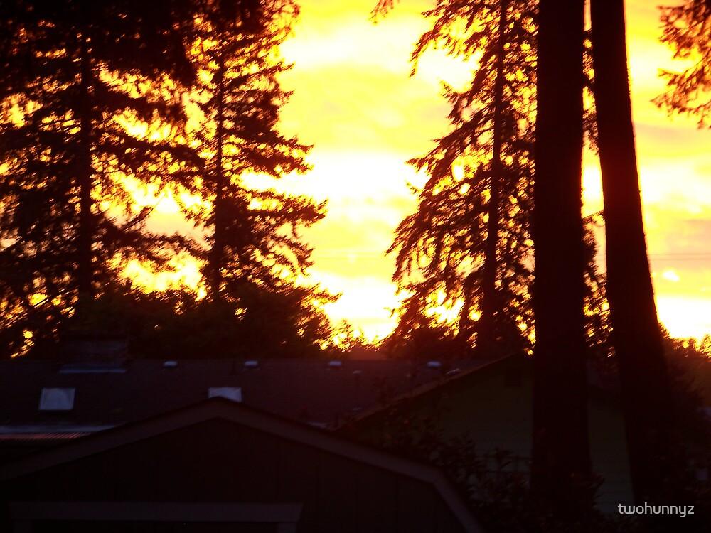 Morning Ablaze by twohunnyz
