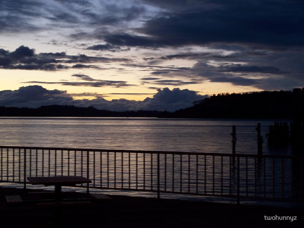 Winter Sunset by twohunnyz