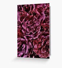 Summer Roses Aged Crushed Velvet Greeting Card