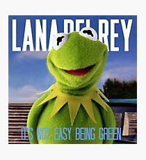 Kermit Del Rey  Photographic Print