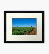 Growing Crops...Dookie. Framed Print