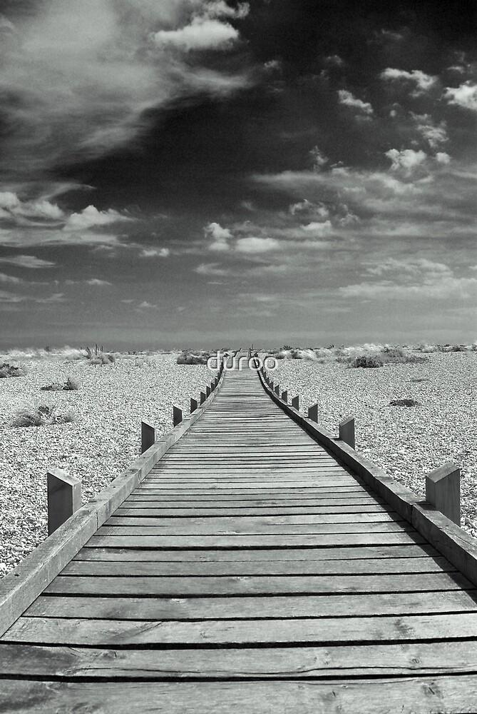 Mono Boardwalk by duroo