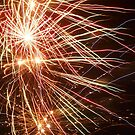fireworks by dennis wingard