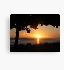 Karumba Sunset Canvas Print