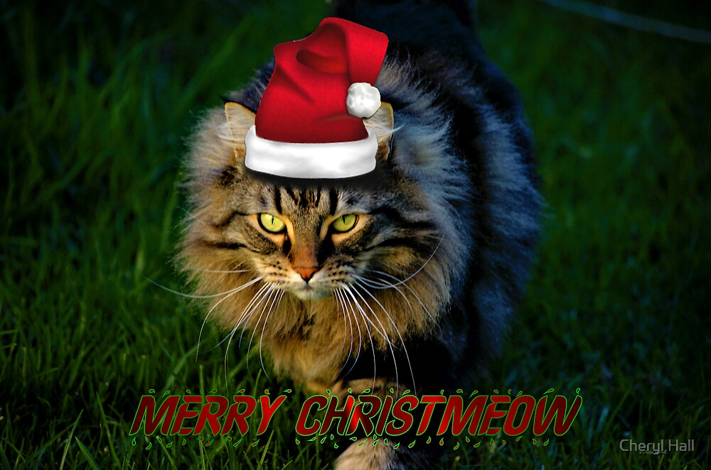 HAVE YOURSELF A FURRY LITTLE CHRISTMAS by Cheryl Hall