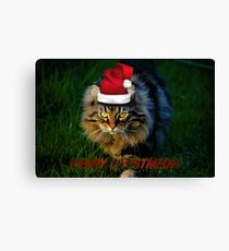 HAVE YOURSELF A FURRY LITTLE CHRISTMAS Canvas Print