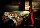 The Sleeper . . .  by Rosalie Dale