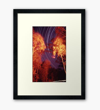 Star trails with 'flaming' trees Framed Print