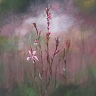 Field Impressions 4: WIllowherb (card only) by Tanja Udelhofen