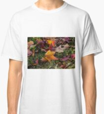 Red and Orange Autumn coloured leaves on green grass Classic T-Shirt