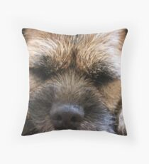 Border Terrier Gifts for Dog Lovers Whiskers & Paws Throw Pillow