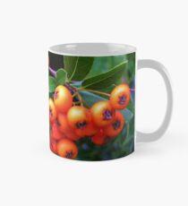 Pyracantha Berries Classic Mug