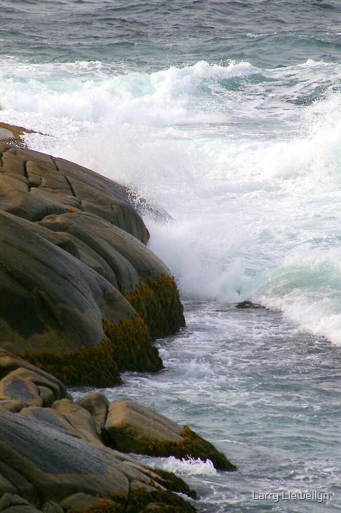 The Ocean Speaks....... by Larry Llewellyn