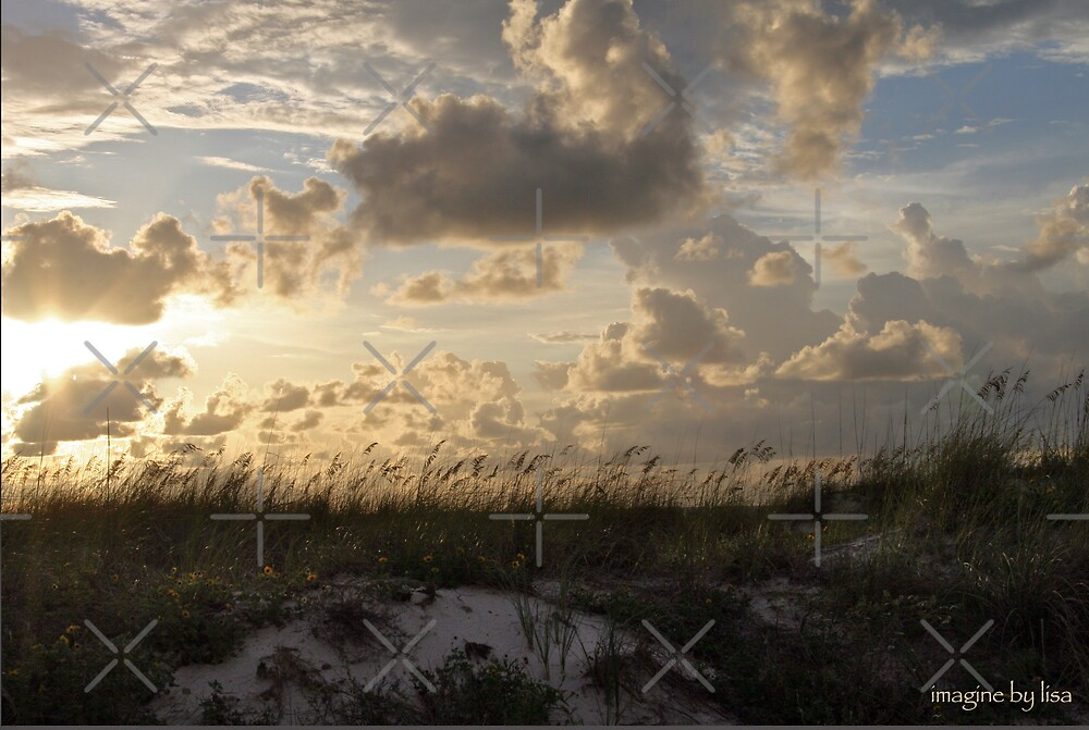 clearwater by Lisa Hildwine