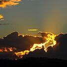 July Sunset #1 by GailD