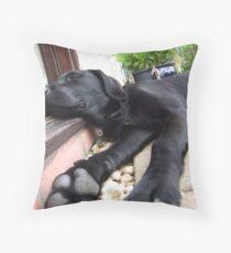 Big Paws Throw Pillow