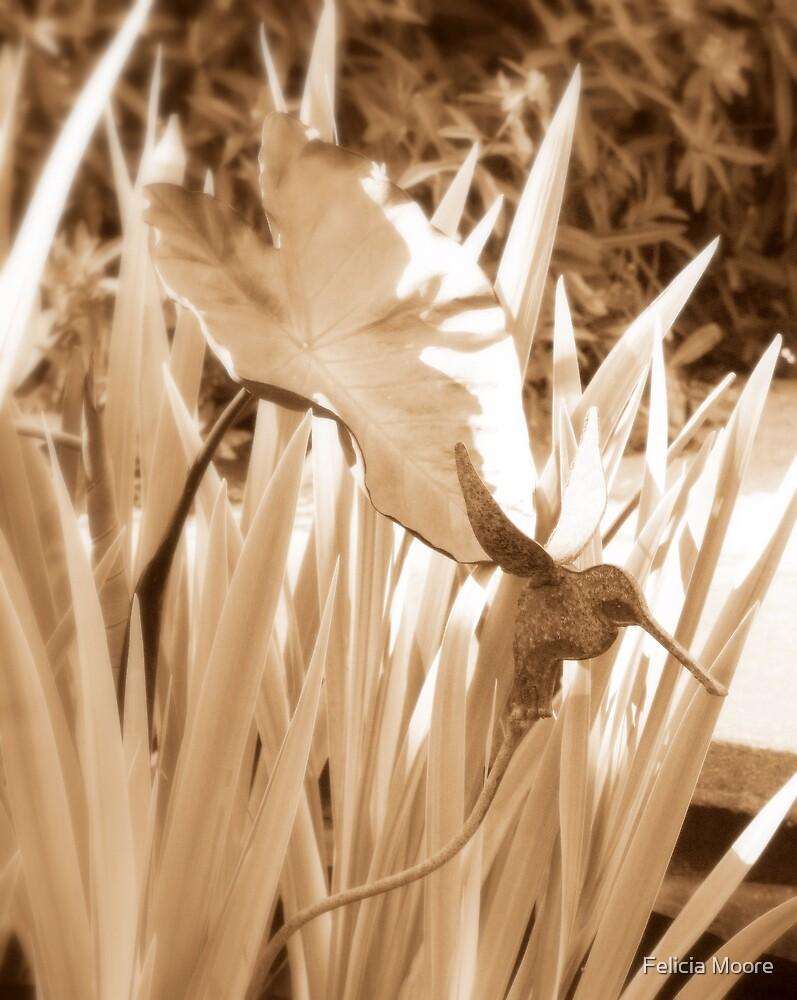 Garden Gift by Felicia Moore
